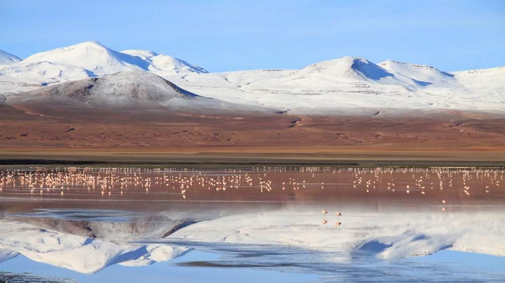Laguna Colorada 2 - ORO