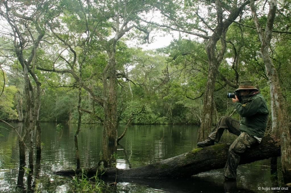 safari fotografico mod