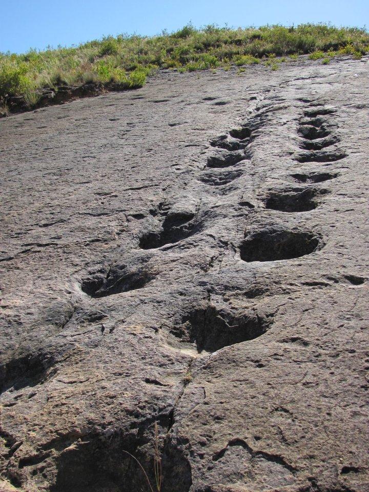 Inmensas huellas de dinosaurios son parte del atractivo de Toro Toro.