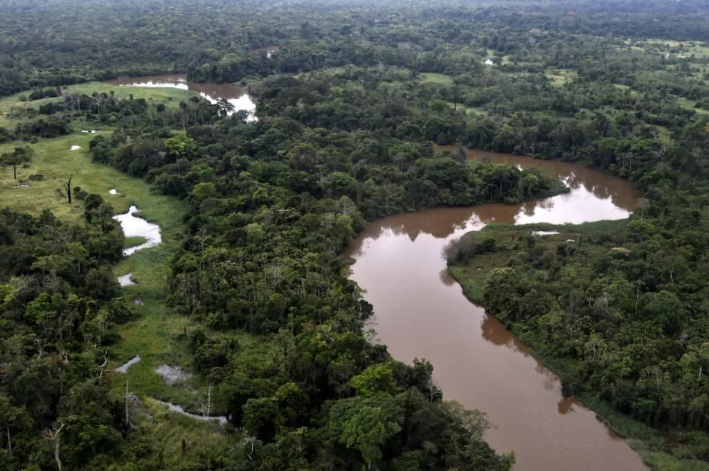 Image3-Adriano_Gambarini-WWF_Living_Amazon_Initiative-HI