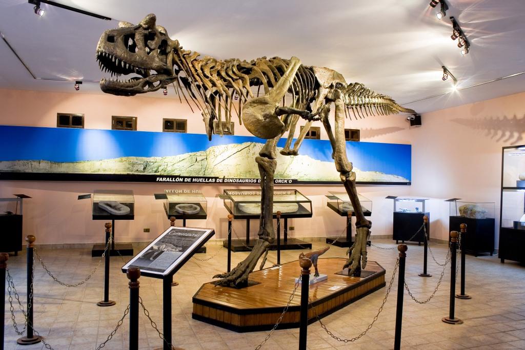 esqueleto-carnotauro