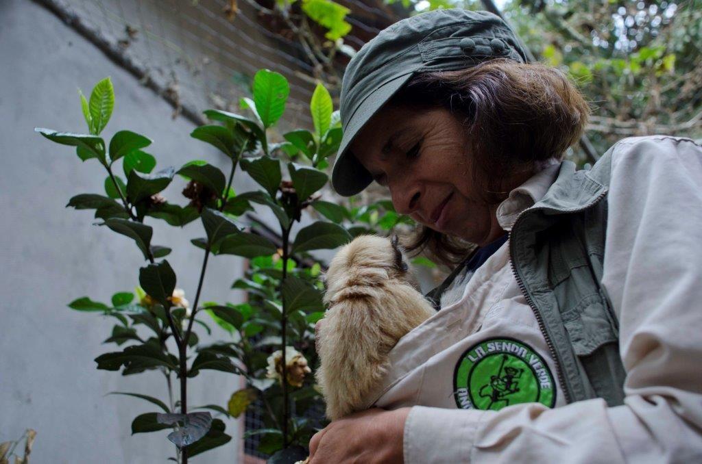 Victoria cuidando un mono bebé recién llegado.