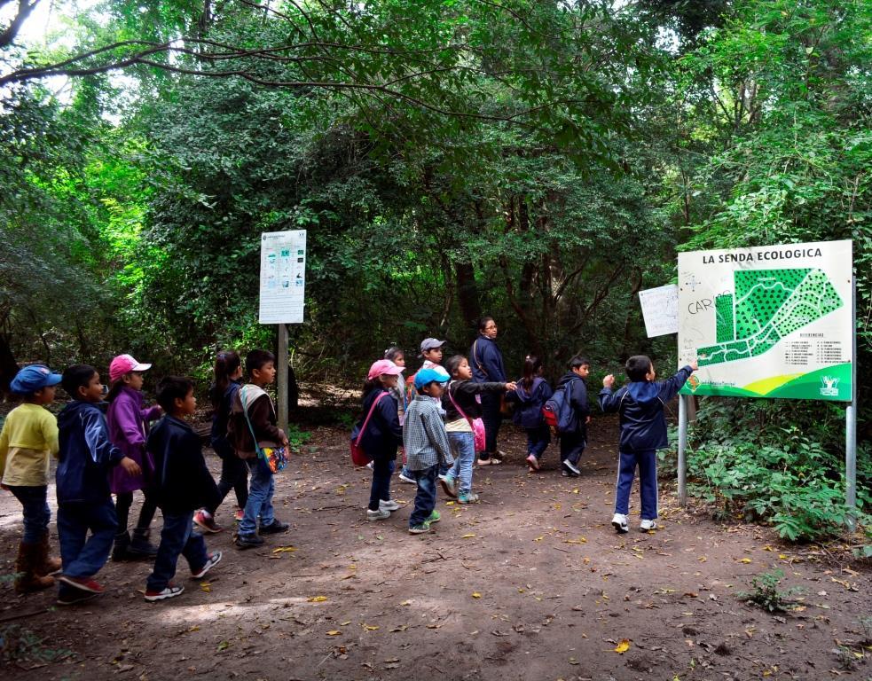 La Senda Ecológica se extiende por 7 km en los que recorre los tres ecosistemas que convergen en el Jardín Botánico: bosque chiquitano, el bosque subtropical y el bosque chaqueño. Fotos: © Cecilia Requena Gallo