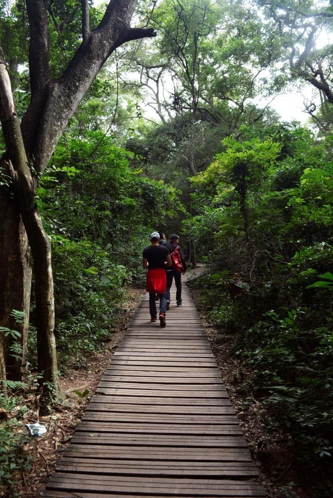 Los sendero están debidamente acomodados para facilidad de los visitantes. Foto: © Cecilia Requena Gallo