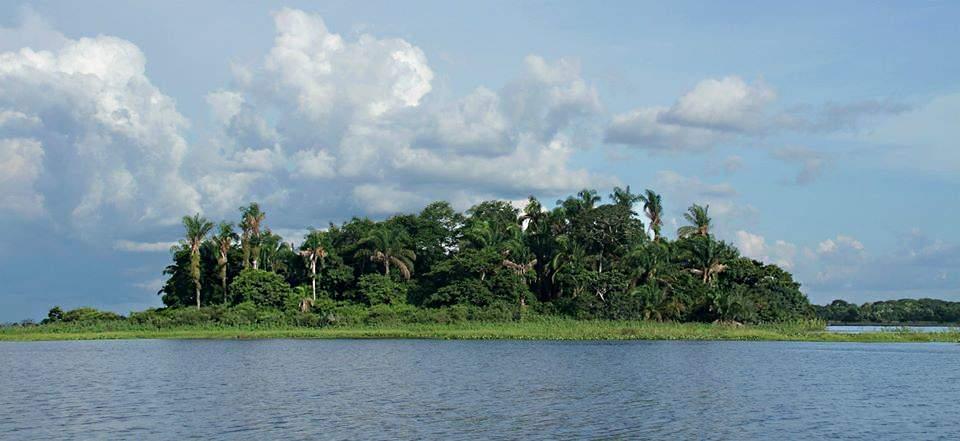 Paisaje de la Reserva Manuripi en el departamento de Pando. Foto: © Hugo Santa Cruz
