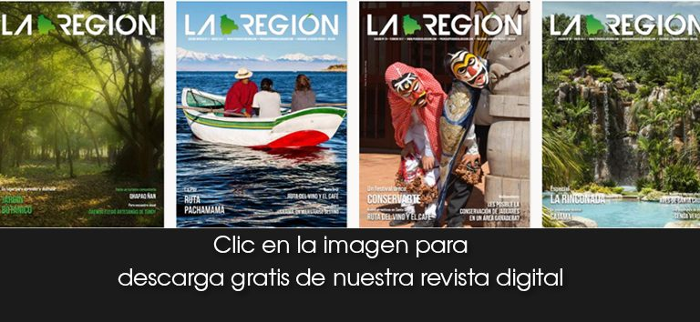 revistas-descarga