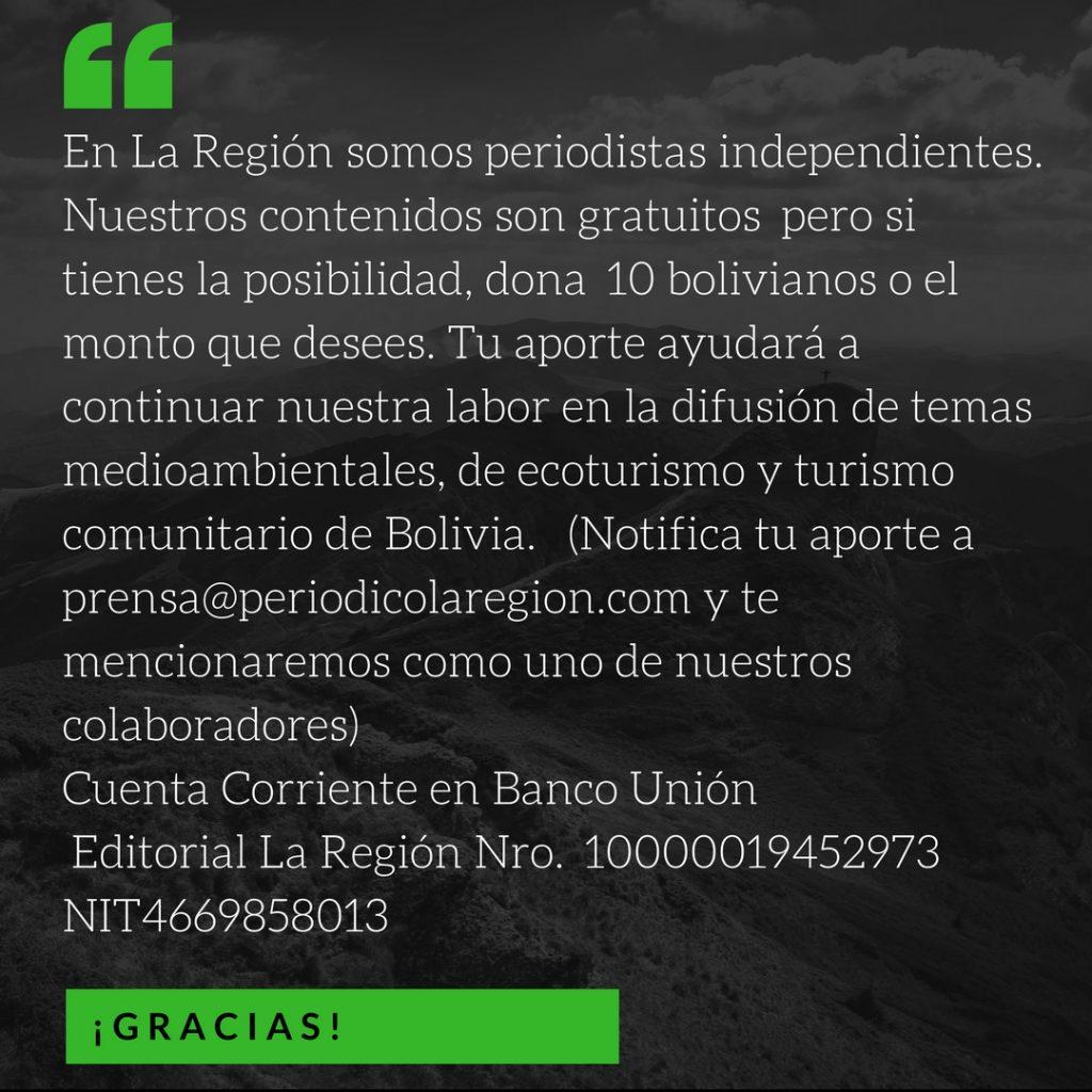 Alipaz denuncia que más de 5000 indígenas de cinco naciones perderán sus territorios. Foto: Chema Formentí.