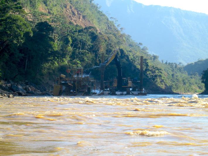 Los bosques de queñoa están gravemente fragmentados y actualmente solo se encuentran parches en los Andes tropicales. Foto: Asociación Armonía.