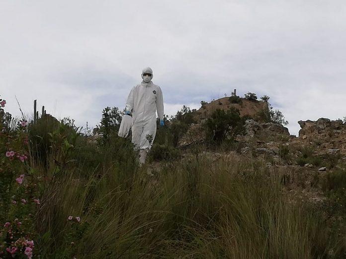 202a33f57 Periódico La Región   Turismo y medioambiente en Bolivia