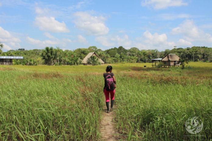 Bosques en el Caguán. Una de las comunidades del Bajo Caguán. Foto: FCDS.