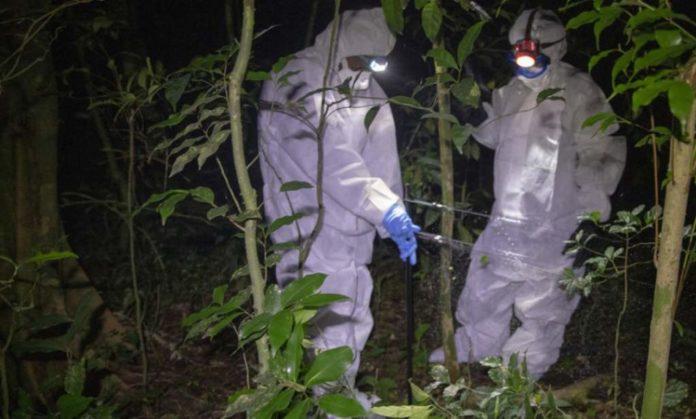 Investigadores de ébola en Sierra Leona. Foto: Laura Gil
