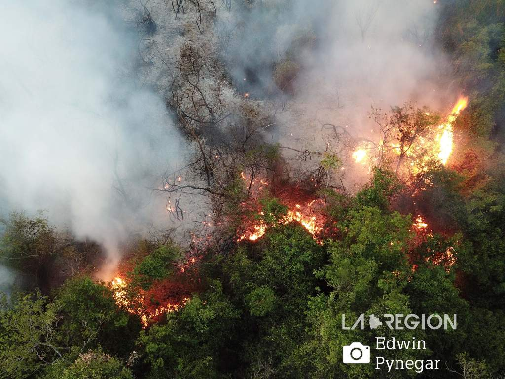 Aerial view of the fire in the forest of Kaa Iya National Park. Photo: Edwin Pynegar